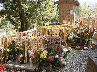 太江寺の供養合同埋葬